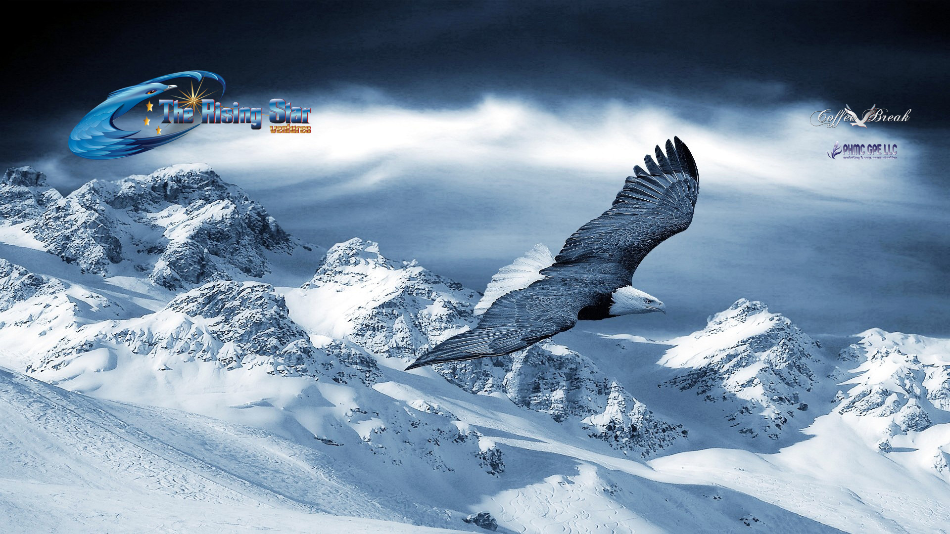 winter-animal-wallpaper-desktop-p423.jpg